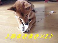 Itomaki1
